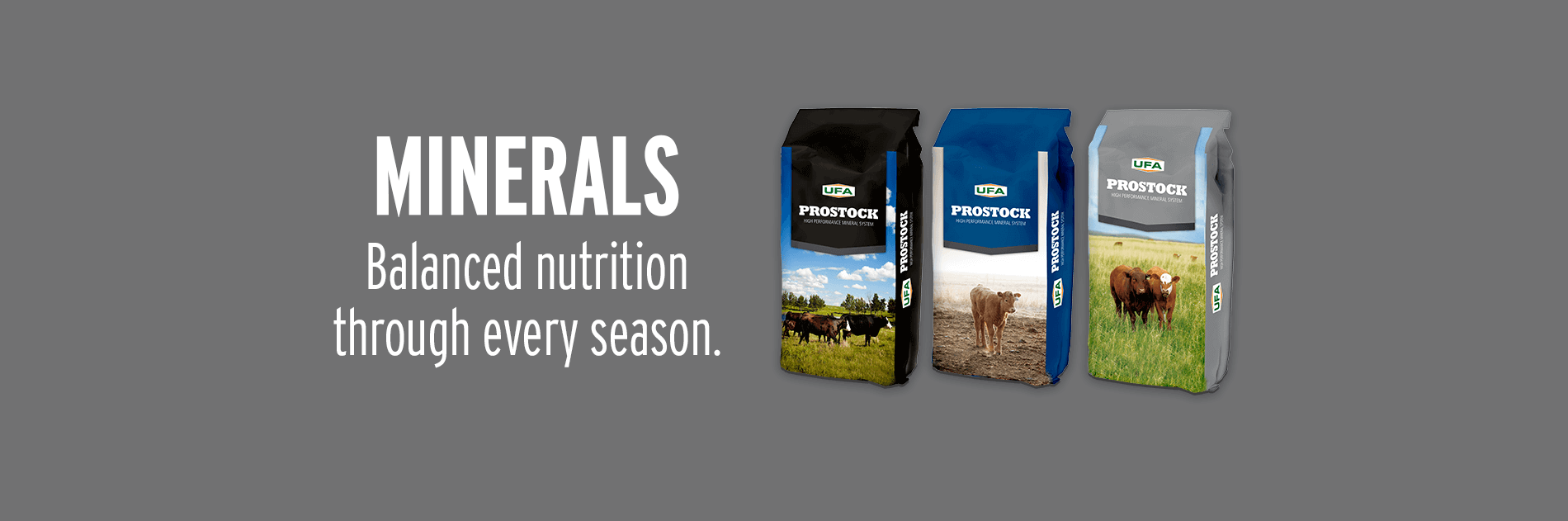 Minerals - Balanced Nutrition for Every Season